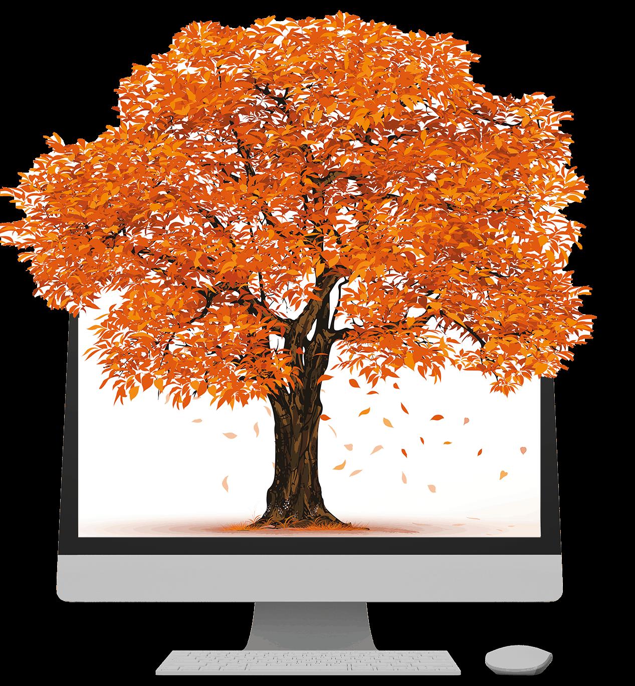 Orange Baum in IMac